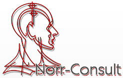 norr_consult.png